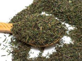 Бесценный дар природы: трава, которая лечит более полусотни недугов